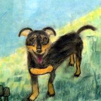 El perrito de Pablo retratado por Pablo y Victor