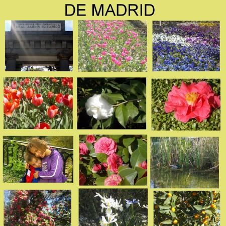 Planes con niños en Madrid otoño y primavera