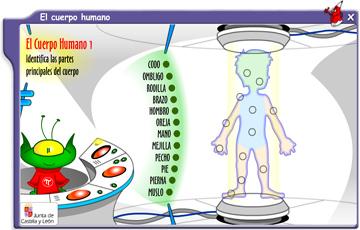 ejercicios-online-interactivos-cuerpo-humano-primaria